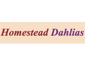 农场大丽花, Homestead Dahlias
