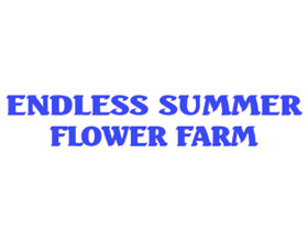 无尽夏季花卉农场, ENDLESS SUMMER FLOWER FARMS