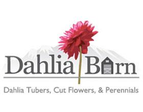 大丽花仓库, Dahlia Barn
