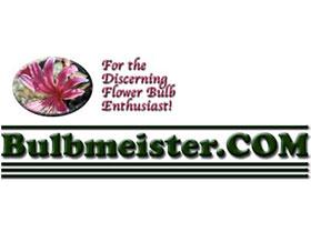 美国Bulbmeister.COM球根花卉网