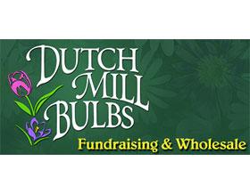 荷兰磨坊球根, Dutch Mill Bulbs