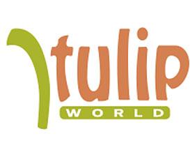 郁金香世界 ,Tulip World