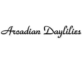 阿卡迪亚萱草 ,Arcadian Daylilies