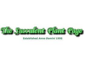 多肉植物主页 The Succulent plant Page