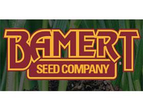 贝默特种子公司, Bamert Seed Company