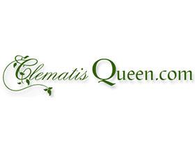 铁线莲女王, Clematis Queen