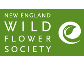 新英格兰野生花卉协会 ,New England Wild Flower Society
