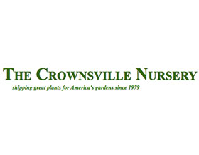 克劳斯维尔苗圃, Crownsville Nursery
