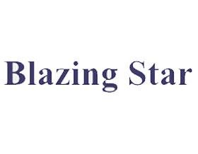 炽热之星, Blazing Star
