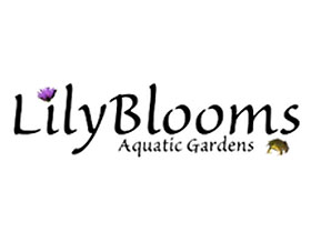 Lilyblooms水上花园, Lilyblooms Aquatic Gardens