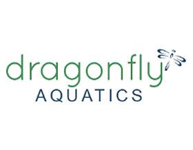 水蜻蜓, Dragonfly Aquatics