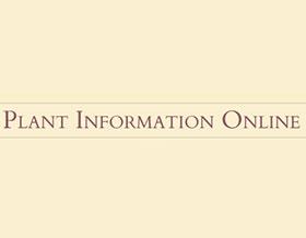 植物信息在线, Plant information online