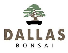 达拉斯盆景, Dallas Bonsai