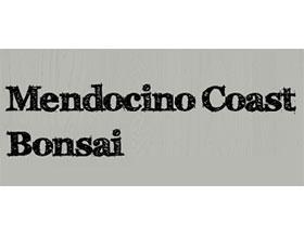 门多西诺海岸盆景 ,Mendocino Coast Bonsai
