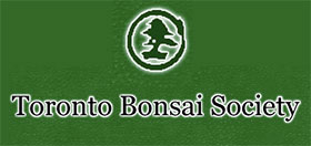 多伦多盆景协会, Toronto Bonsai Society