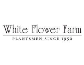 白花农场 White Flower Farm