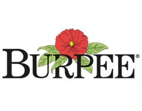 伯比种子公司 Burpee Seed Company
