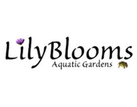 百合花水生植物花园 Lilyblooms Aquatic Gardens