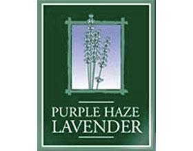 紫色迷雾薰衣草农场 PURPLE HAZE LAVENDER Farm