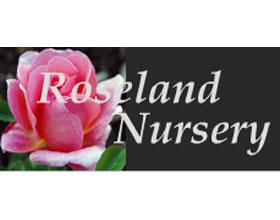 罗斯兰苗圃 Roseland Nursery
