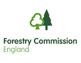 英格兰森林 Forestry England