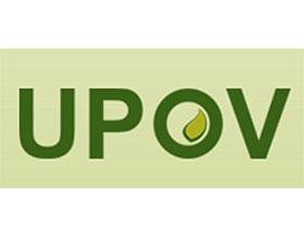 国际植物新品种保护联盟 The International Union for the Protection