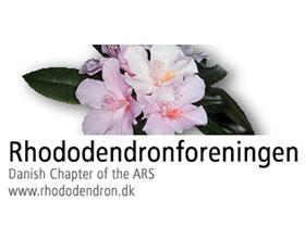 美国杜鹃花协会丹麦分会 Rhododendronforeningen