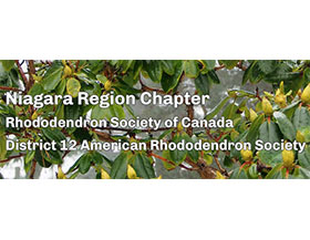 加拿大杜鹃花协会尼亚加拉地区分会 The Niagara Region, Rhododendron Society of Canada