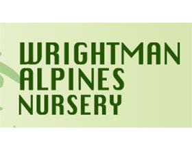 赖特曼高山植物苗圃 Wrightman Alpines Nursery