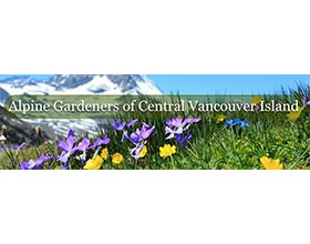 中央温哥华岛的高山园丁 Alpine Gardeners of Central Vancouver Island