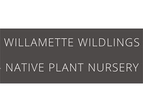 威拉米特野生苗圃 WILLAMETTE WILDLINGS NURSERY
