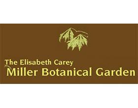 西雅图米勒植物园 Miller Botanical Garden