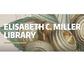 华盛顿大学米勒图书馆 University of Washington Miller Library