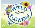 加拿大阿尔伯特野生花卉和种子 NATIVE ALBERTA WILDFLOWERS PLANTS & SEEDS