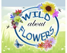 加拿大野花苗圃 Wild About Flowers
