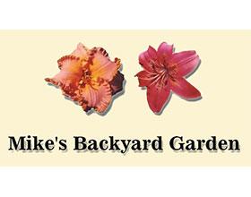 麦克的后花园 Mike's Backyard Garden