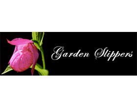 加拿大花园拖鞋兰 Garden Slippers