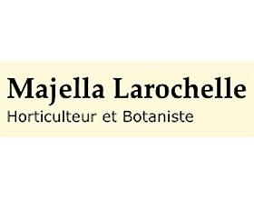 Majella Larochelle种子