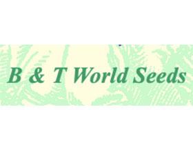 B&T世界种子