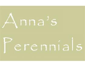 安娜的多年生植物 Anna's Perennials