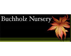 巴克霍尔兹苗圃 Buchholz Nursery