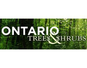 加拿大安大略省的树木和灌木 Ontario Trees and Shrubs