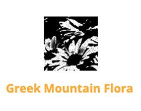 希腊山地植物 Greek Mountain Flora