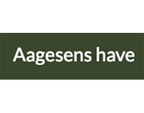 丹麦Aagesens花园 Aagesens have