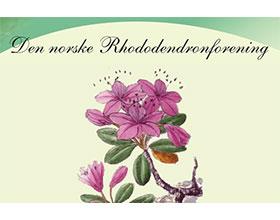 挪威杜鹃花协会 Den norske Rhododendronforening