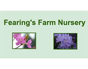 费林的农场苗圃(专业杜鹃)Fearing's Farm Nursery