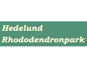 丹麦Hedelund Rhododendronpark杜鹃公园