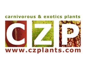 捷克食虫植物 CARNIVOROUS PLANTS