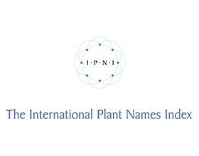 国际植物名称索引 International Plant Names Index (IPNI)