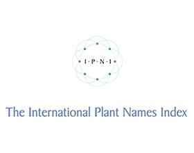 国际植物名称索引 International Plant Names Index (IPNI)